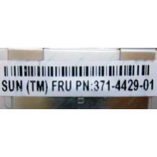 Серверная память SUN (FRU PN 371-4429-01) 4096Mb (4Gb) DDR3 ECC в Котельниках, память для сервера SUN FRU P/N 371-4429-01 (Котельники)
