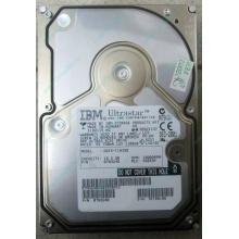 Жесткий диск 18.2Gb IBM Ultrastar DDYS-T18350 Ultra3 SCSI (Котельники)